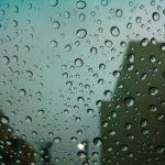 【掃除上手】梅雨時期のカビは事前に対策